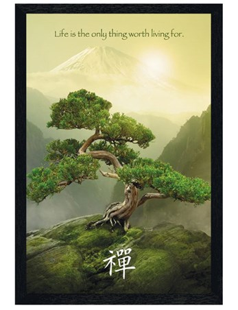 Black wooden framed life is the only thing worth living for Poster mural geant zen