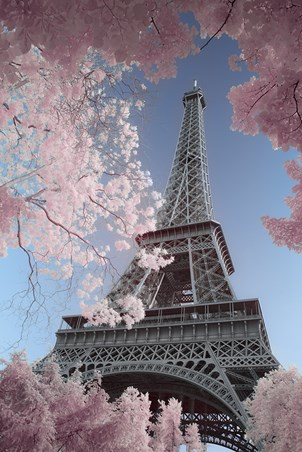 David Clapp Eiffel Tower Infrared Poster