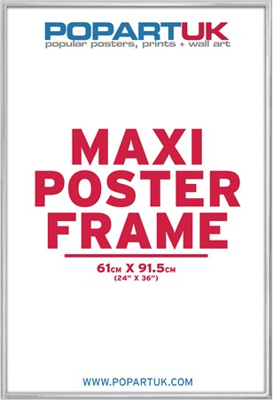 61x91.5cm Brushed Silver Poster Frame - Suitable for Regular Posters