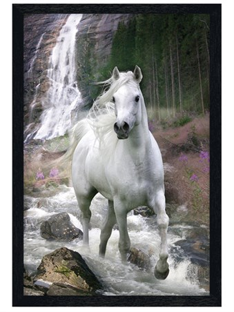 Black Wooden Framed Horse in a Waterfall Framed Poster