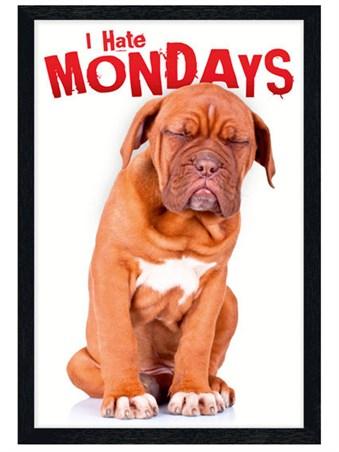 Black Wooden Framed I Hate Mondays Framed Poster