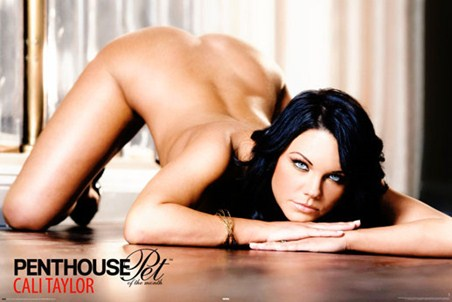 Cali Taylor - Penthouse Girls
