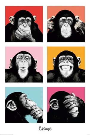 Pop Art Chimps - The Chimp