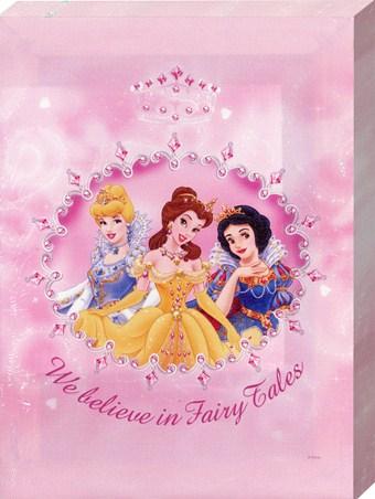 We Believe in Fairy Tales - Disney Princesses