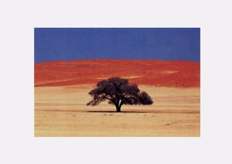 Namibia - Jean Paul Nacivet