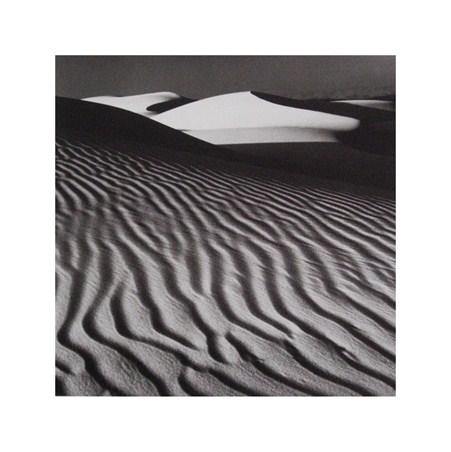 White Dune - Nicholas Pavloff