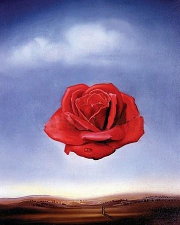 Meditative Rose - Salvador Dali