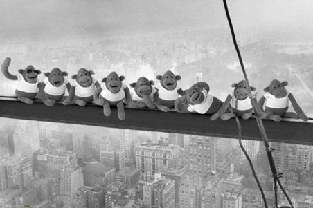 Monkeys on a Girder - Animal Humour