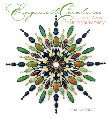 Exquisite Creatures - Christopher Marley