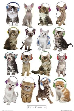 Cool Cats in Headphones - Keith Kimberlin