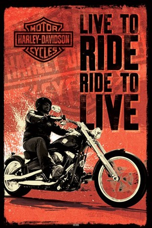Live To Ride - Harley Davidson