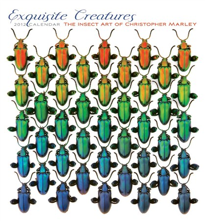 Exquisite Creatures - Christopher Marley