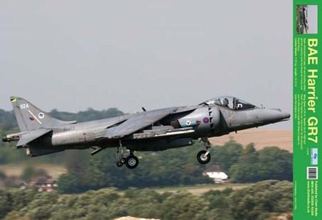 BAE Harrier GR7 - Taking Off!