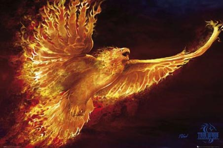 Phoenix - Tom Wood