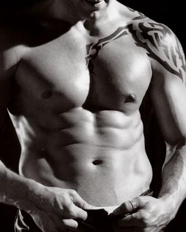 Rippling Six-Pack - Hot Male Torso