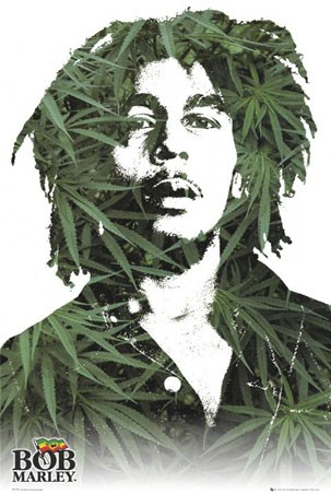 Bob Marley in Cannabis - Musical Icon in a Pop Art style