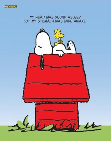 Snoopy and Woodstock - Peanuts - Charles M. Schultz