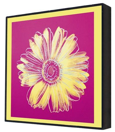 Daisy, c.1982 (fuschia and yellow) - Andy Warhol Box Print
