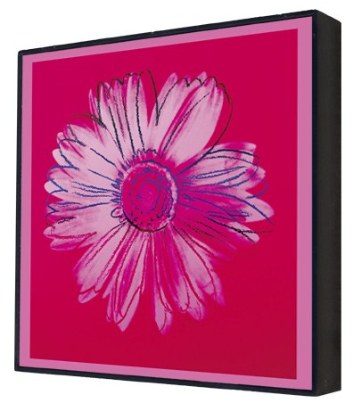 Daisy, c.1982 (crimson and pink) - Andy Warhol Box Print