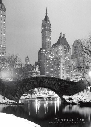 Central Park in Winter - New York