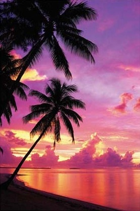 Sunset on a Tahitian Beach - Purple Sky