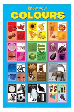 Know Your Colours - Babies & Toddlers Learning Colours Visually