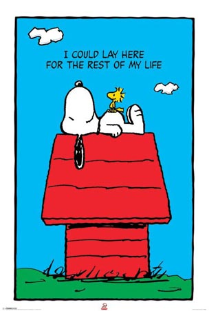 I could lay here for the rest of my life - Snoopy