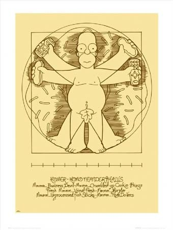 Da Vinci's Vitruvian Man - Homer Simpson - The Simpsons