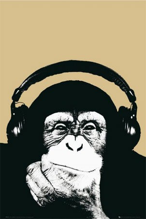 Monkey with Headphones - Steez
