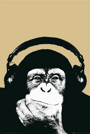 Monkey with Headphones - Steez