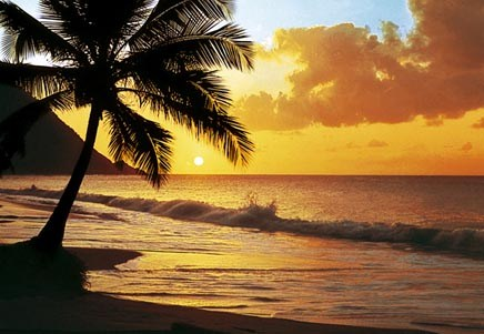pacific sunset 8 sheet giant wall mural buy online