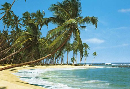 Sudsee Tropical Paradise - 8 Sheet Tropical Island Wall Mural