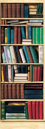 Biblioth�que - Art 2 Sheet Slim Wall Mural