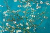 Almond Blossom Vincent Van Gogh
