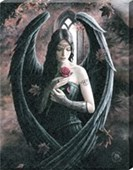 Angel Rose Canvas Print Anne Stokes