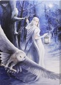 Midnight Messenger Canvas Print Anne Stokes