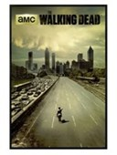 Gloss Black Framed Andrew Lincoln Is Rick Grimes The Walking Dead