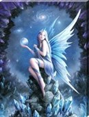 Star Gazer Canvas Print Anne Stokes