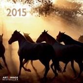 Horses Horse Lovers