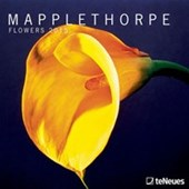 Flower Photographs Mapplethorpe