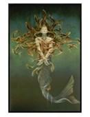Gloss Black Framed Metamorphosis Sheila Wolk