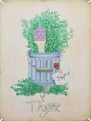 Thyme Herb Pot
