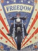 Freedom The American Dream