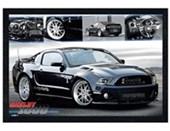 Black Wooden Framed Ford Shelby 1000 Fabulous Ford