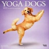 Yoga Dogs Dan Borris