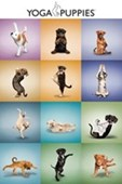 Yoga Puppies Collage Stay Flexible