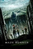 The Maze Runner The Ultimate Race