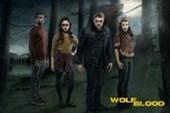 Season 3 Cast Wolfblood