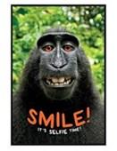 Gloss Black Framed Smile! It's Selfie Time