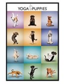 Gloss Black Framed Yoga Puppies Collage
